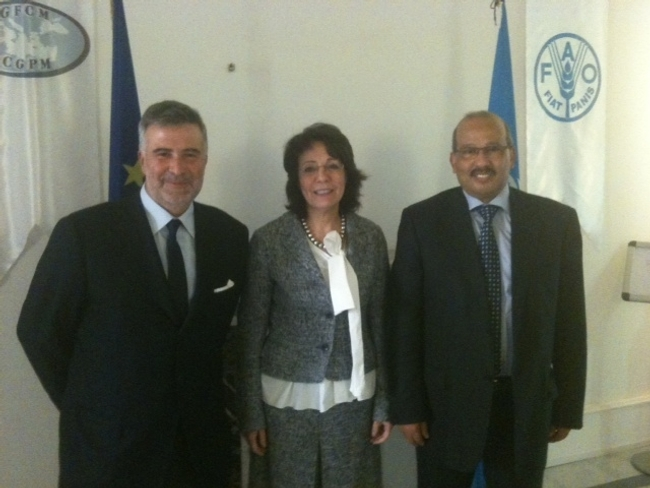 Commissioner Maria Damanaki met with Mr Stefano Cataudella and Mr Abdellah Srour, Chairman and Executive Secretary of the General Fisheries Commission for the Mediterranean (GFCM)