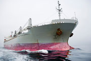 Bow of a grey and pink cargo ship © Lifesize/Stephen Schauer/Stephen Schauer