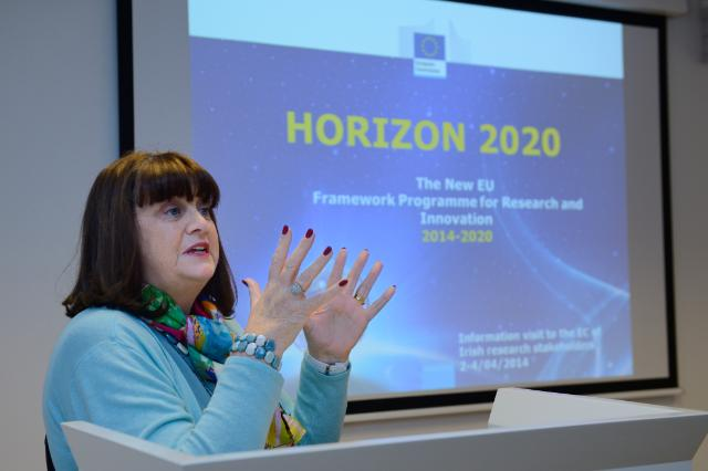 Visit of stakeholders from the Irish Research Community to the EC