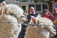 Visite d'Andris Piebalgs, membre de la CE, au Pérou