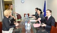 """Illustration of """"Visit of Isabelle Falque-Pierrotin, Chair of the CNIL and Chair of the Article 29 Working Party, to the EC"""""""