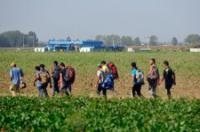 Refugees in Serbia and Croatia