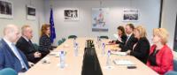Visit of Radu Boroianu, President of the Romanian Cultural Institute (ICR), to the EC