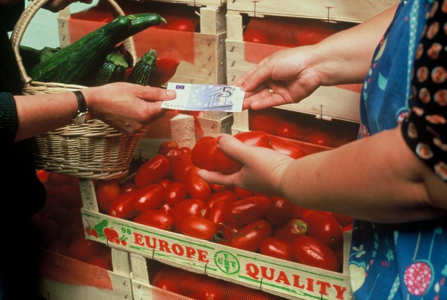 EURO 3 - everyday euro
