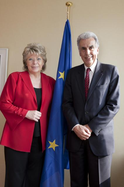 Meeting between Viviane Reding, Member of the EC, and P. Nikiforos Diamandouros, European Ombudsman