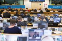Participation of Kristalina Georgieva, Vice-President of the EC, in the public hearing of the EESC 'A performance-based EU budget and its focus on real results: The key to sound financial management'