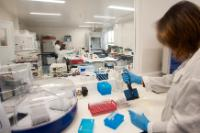 Employees from the Portuguese National Institute of Agrarian and  Veterinarian Investigation