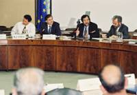 Participation of Christos Papoutsis, Member of the EC, to the plenary meeting of the IRDAC