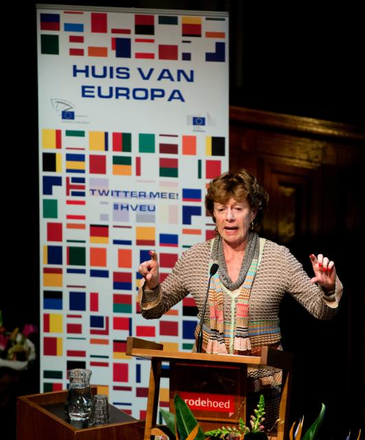 Participation of Neelie Kroes, Vice-President of the EC, at the seminar