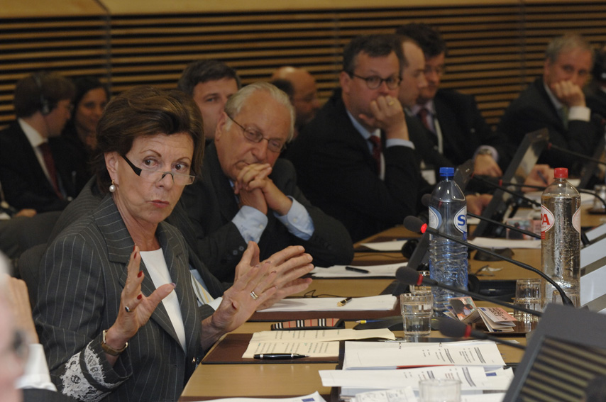 Participation of Neelie Kroes, Member of the EC, in the conference
