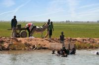 Malian children swimmi...