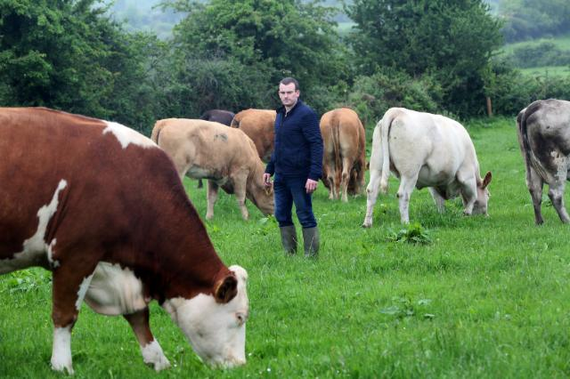 Michael McDonald, Irish farmer, is farming 60 hectares of land just outside Thomastown. This...