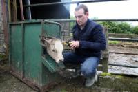 A farm involved in the 'BETTER Farm beef' Programme in Thomastown, Ireland