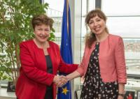 Visit of Cristiana Pașca Palmer, Romanian Minister for Environment, Waters and Forestry, to the EC