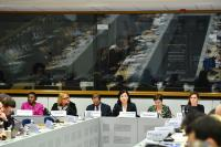 Participation of Vĕra Jourová, Member of the EC, at the 4th Meeting of the EU High Level Group on Combating Racism, Xenophobia and Other Forms of Intolerance