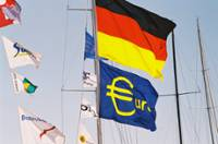 National flags and flags of the euro