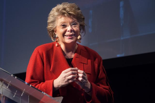 Participation of Viviane Reding, Vice-President of the EC, in the annual general meeting of the Europe Direct Network