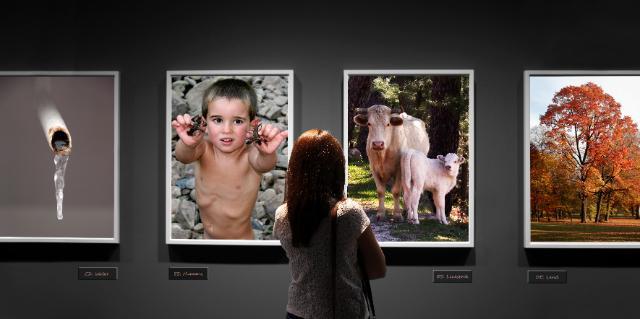 Concours de photos de la DG Agriculture et développement rural (3)