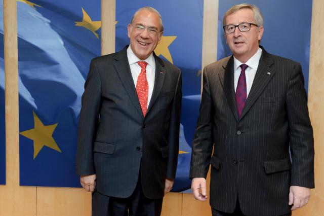 Visit of Angel Gurría, Secretary General of the Organisation for Economic Co-operation and Development, to the EC