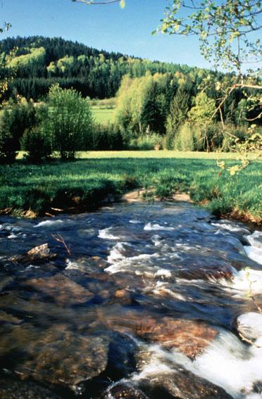 Environment 2000