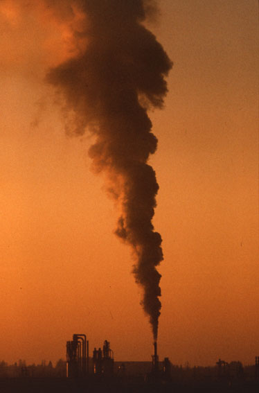 The European Union's environmental policy has already achieved some beneficial results, but much...