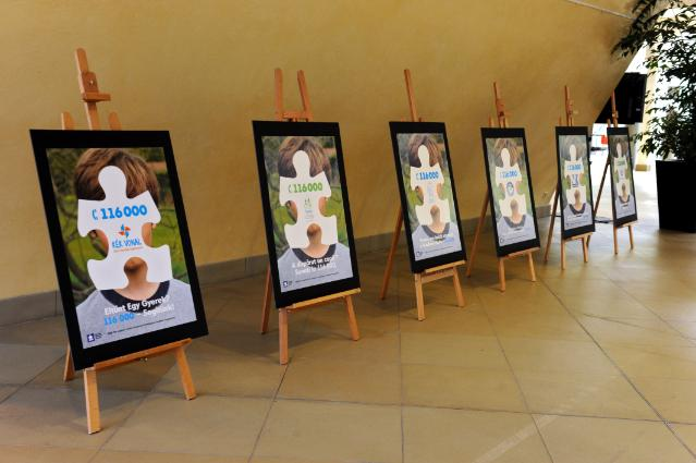Solar-powered forget-me-not flowers for Missing Children's Day