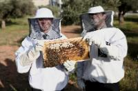 Jyrki Katainen, on the left, holding a honeycomb with bees and wearing a beekeeping suit, during his visit of Apivita
