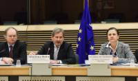 Participation of Johannes Hahn, Member of the EC, at the International Financial Institutions South meeting