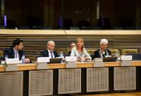 Visit of Israeli ambassadors accredited to the EU insitutions to the EC