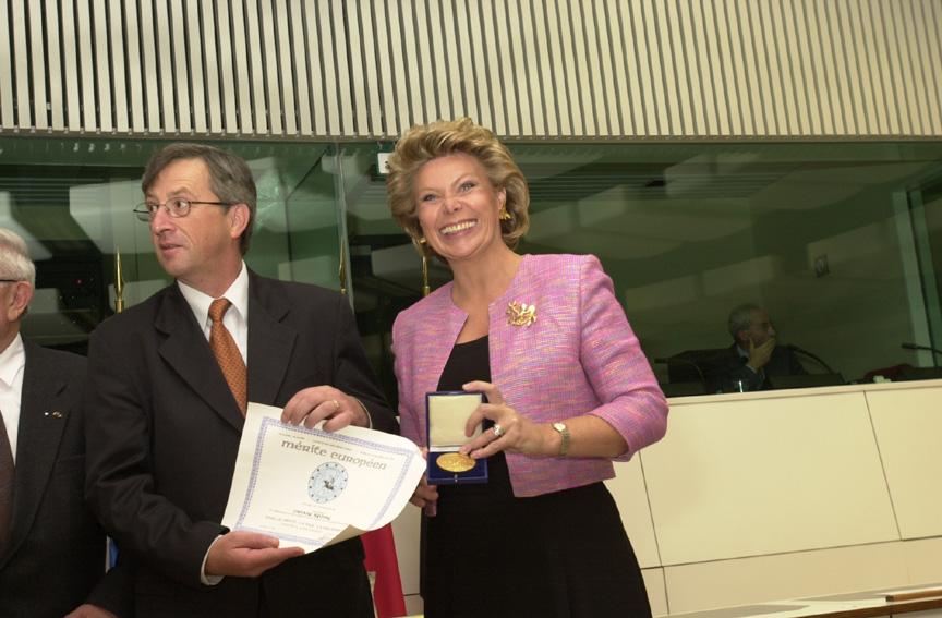 Award of the European Merit Award