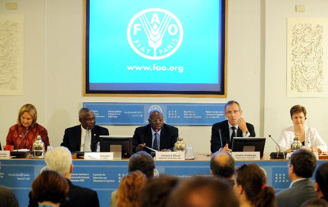 Participation of Andris Piebalgs and Kristalina Georgieva, Members of the EC, at the Annual Meeting of the FAO