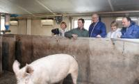Willy Borsus, Joke Schauvliege, Phil Hogan and Bart De Baerdemaeker, owner of a pig holding in Mollem (from right to left)