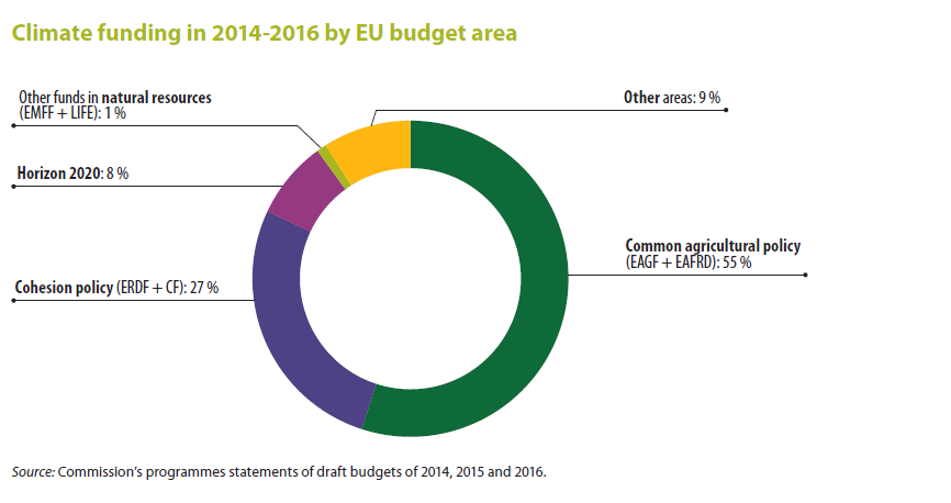 The common agricultural policy and the eu budget economics essay