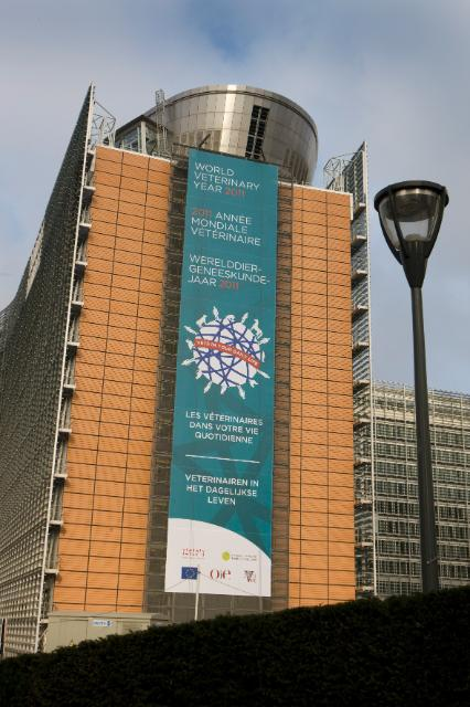 The Berlaymont building with: World Veterinary Year 2011
