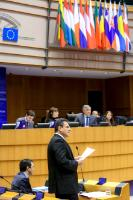 "Illustration of ""Participation of Maroš Šefčovič, Vice-President of the EC, in the EP plenary session"""