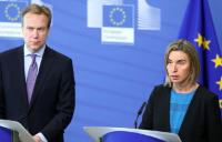 Participation of Federica Mogherini, Vice-President of the EC, and Johannes Hahn, Member of the EC, in the annual spring meeting of the Ad Hoc Liaison Committee