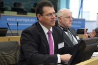 Journée de l'initiative citoyenne européenne 2013