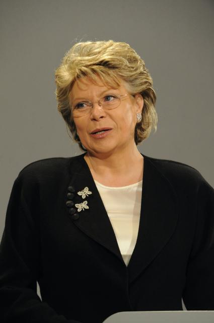 Participation of Viviane Reding, Vice-President of the EC, at the meeting of the Heads of Representation of the EC