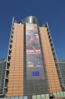The poster illustrating the launch of the International Roma Day of the 08 April 2010 on the Berlaymont Building
