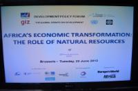 Participation of Andris Piebalgs, Member of the EC, at the annual summit on Africa: 'Africa's economic transformation: The role of natural resources', organised by the Friends of Europe