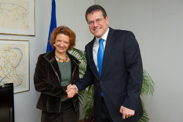 Visit of Monica Frassoni, President of the European Alliance to Save Energy, to the EC