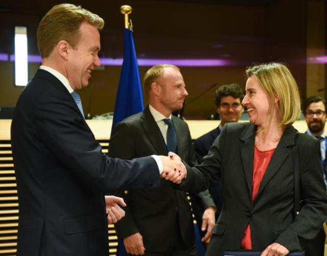 """Illustration of """"Participation of Federica Mogherini at the Ad Hoc Liaison Committee (AHLC) meeting of the donor..."""