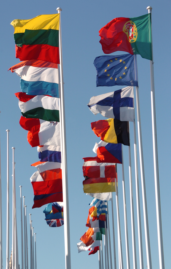 European and National flags of 25 Members States
