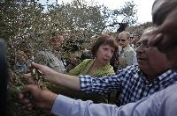 Visit of Catherine Ashton, Vice-President of the EC, to the Occupied Palestinian Territory