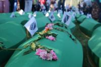 Commemoration of the 20th anniversary of the Srebrenica massacre