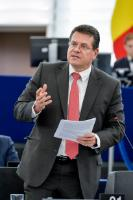 Participation de Maroš Šefčovič, vice-président de la CE, et Miguel Arias Cañete, membre de la CE, à la session plénière du PE