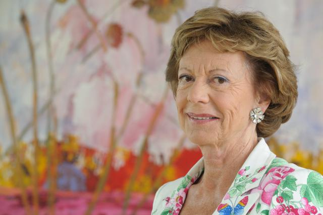 Neelie Kroes, Vice-President of the EC