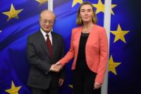Visit of Yukiya Amano, Director General of the International Atomic Energy Agency (IAEA) , to the EC