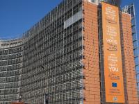 European Year of Citizens 2013