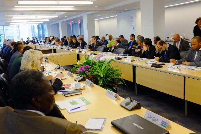 Participation de Connie Hedegaard, membre de la CE, à la 69e session plénière de l'Assemblée générale des Nations unies